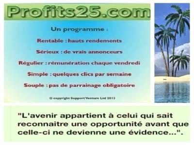 profits25 - 40% de revenus